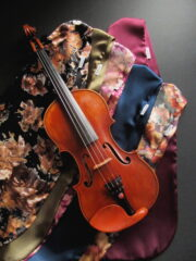 Violin Bags - Colourful