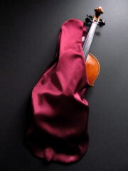 Violin in Bag
